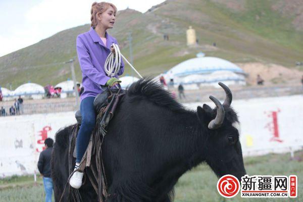 """受邀参与那达慕大会的""""网红达人""""试骑竞速赛牦牛"""