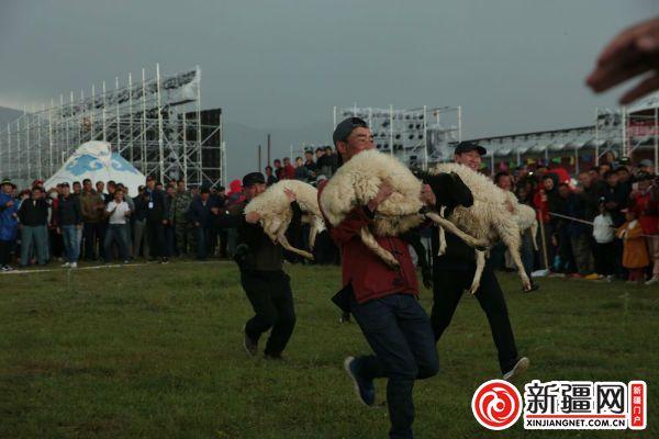 抱羊接力赛引发现场游客阵阵笑声