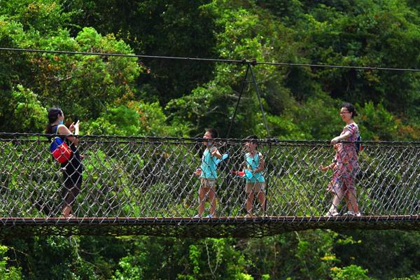 """""""六·一""""儿童节,游客畅游亚龙湾热带天堂森林旅游区"""